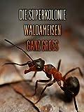 DIE SUPERKOLONIE - WALDAMEISEN GANZ GROSS